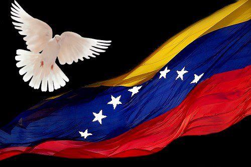 ave-fenix-venezuela